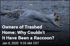 Owners of Trashed Home: Why Couldn't It Have Been a Raccoon?