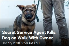 Secret Service Agent Kills Dog on Walk With Owner