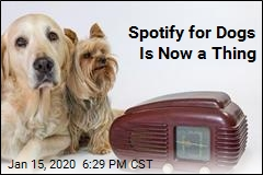 Spotify's New Playlist Is for Your Dog