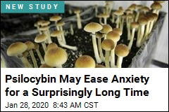 Psychedelics May Ease Anxiety for a Surprisingly Long Time