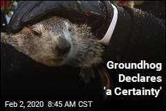 Groundhog Declares 'a Certainty'