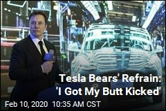 Tesla Bears' Refrain: 'I Got My Butt Kicked'