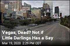 Vegas, Dead? Not if Little Darlings Has a Say