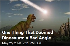 One Thing That Doomed Dinosaurs: a Bad Angle
