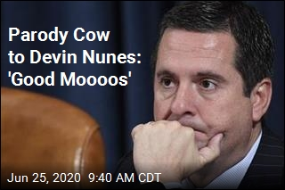 Parody Cow to Devin Nunes: 'Good Moooos'