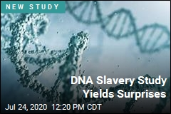 DNA Slavery Study Yields Suprises