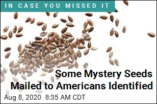 Some of the Mystery Seeds Have Been Identified