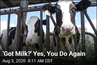 'Got Milk?' Yes, You Do Again