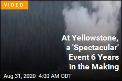 At Yellowstone, a 'Spectacular' Event 6 Years in the Making