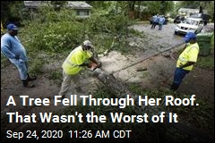 A Tree Fell Through Her Roof. That Wasn't the Worst of It