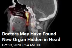 Doctors May Have Found New Organ Hidden in Head