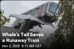 Whale's Tail Saves a Runaway Train