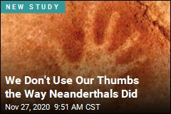 Neanderthal Thumbs Weren't Quite the Same as Ours