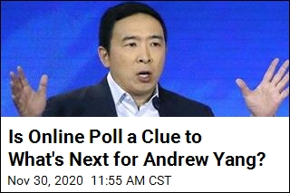 Politico Gets a Look at Poll That Tests Appetite for Yang