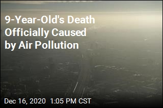 Landmark Ruling: This Pollution Caused Girl's Death