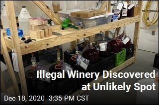 Police Find Illegal Winery— at Sewage Plant