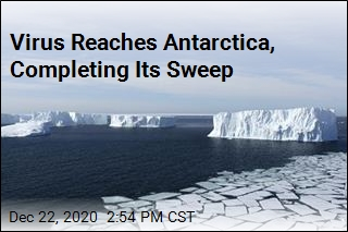 Antarctica Is No Longer Untouched by the Virus