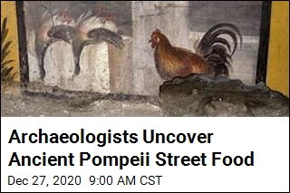 Archaeologists Uncover 2,000- Year-Old Pompeii Street Food