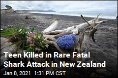 In New Zealand, a Rare Fatal Shark Attack