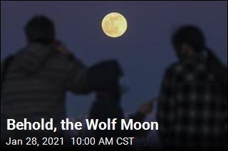 The Wolf Moon Is Coming