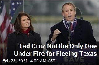 Ted Cruz Not the Only One Under Fire for Fleeing Texas