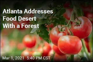 Atlanta Addresses Food Desert With a Forest