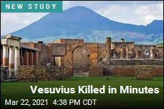 Vesuvius Killed in Minutes