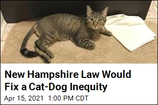 New Hampshire Bill Would Remedy a Cat-Dog Inequity