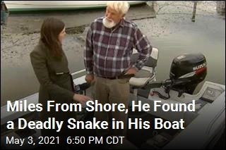 30 Minutes From Shore, He Found a Deadly Snake in His Boat