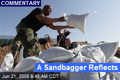 A Sandbagger Reflects