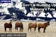 Gov't Is Mucking Up Mustang's Fate