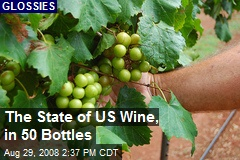 The State of US Wine, in 50 Bottles