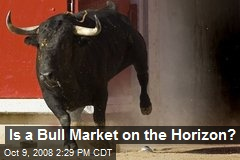 Is a Bull Market on the Horizon?