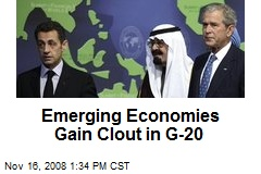 Emerging Economies Gain Clout in G-20