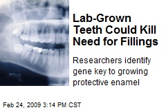 Lab-Grown Teeth Could Kill Need for Fillings