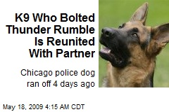 K9 Who Bolted Thunder Rumble Is Reunited With Partner