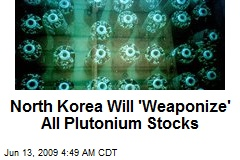 North Korea Will 'Weaponize' All Plutonium Stocks
