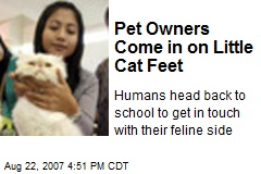 Pet Owners Come in on Little Cat Feet