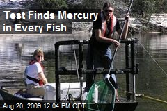 Test Finds Mercury in Every Fish