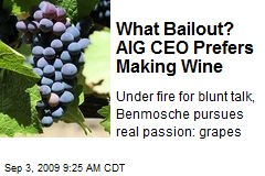 What Bailout? AIG CEO Prefers Making Wine