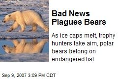 Bad News Plagues Bears