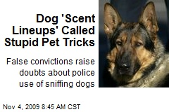 Dog 'Scent Lineups' Called Stupid Pet Tricks