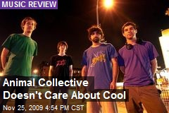 Animal Collective Doesn't Care About Cool
