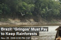 Brazil: 'Gringos' Must Pay to Keep Rainforests