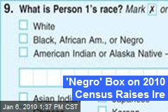 'Negro' Box on 2010 Census Raises Ire