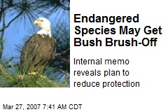 Endangered Species May Get Bush Brush-Off