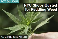NYC Shops Busted for Peddling Weed