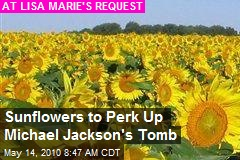 Sunflowers to Perk Up Michael Jackson's Tomb