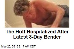 The Hoff Hospitalized After Latest 3-Day Bender