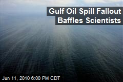 Gulf Oil Spill Fallout Baffles Scientists